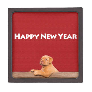 Dogue de Bordeaux, das guten Rutsch ins Neue Jahr Schachtel