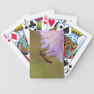 Dolch-Fliege Pokerkarten