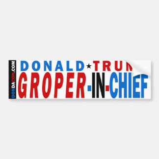 Donald- Trumpgroper im Leiter Autoaufkleber