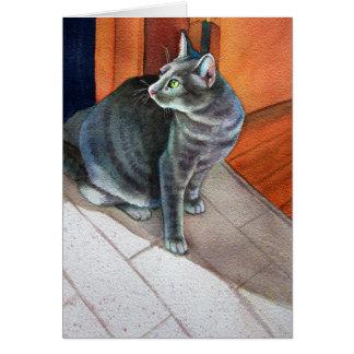 Dora, die graue Tabby-Katze, Karte