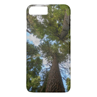 Douglas-Tannenbaumüberdachung iPhone 8 Plus/7 Plus Hülle