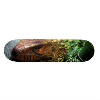 Dracaena du nord Guianensis de lézard de Caiman Skateboard