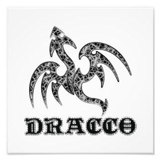 Dracco Foto