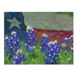 Drapeau du Texas avec des bluebonnets Cartes Postales