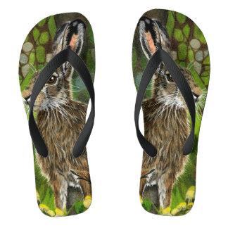 Drehen Sie Reinfälle mit den wilden Hasen um, die Flip Flops