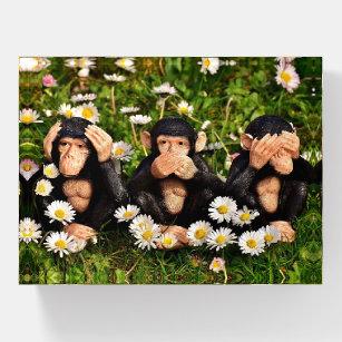 Drei Affen Briefbeschwerer