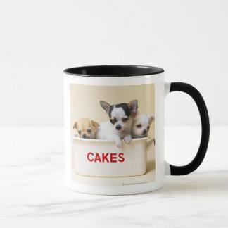 Drei Chihuahuawelpen im Kuchenzinn Tasse