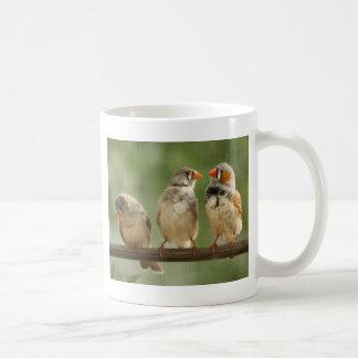Drei Finke auf einem Zweig Kaffeetasse