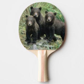 Drei Grizzlybär CUB oder Coys (CUB von Tischtennis Schläger