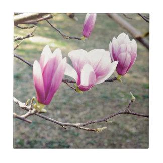 Drei Kirschblüten Keramikfliese