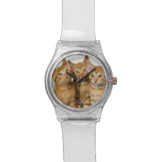 Drei niedliche Frauen der Ingwer-Katzen-Kätzchen Uhr