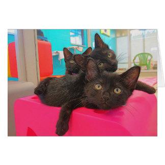 Drei schwarze Kätzchen Karte