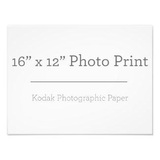Druck der Gewohnheits-16 des Foto-X12 Photo