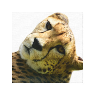 Dschungel-Tier-Foto Leopard Cheetah wildes Leinwanddruck