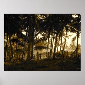 Dschungelsun-Plakat Poster