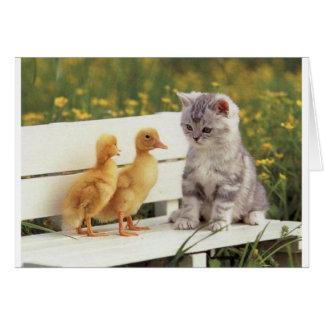 Duckheap und Freundinterviewkätzchen Grußkarte