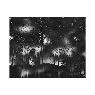 Dunkle surreale Dreamscape Bäume, See, Nacht, Mond Leinwanddruck