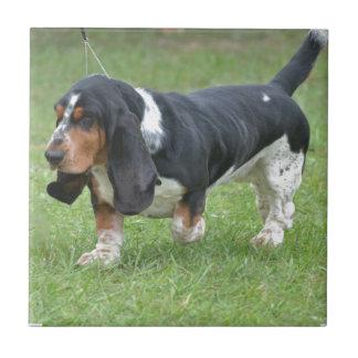 Dunkler Basset Hound-Hund Fliese