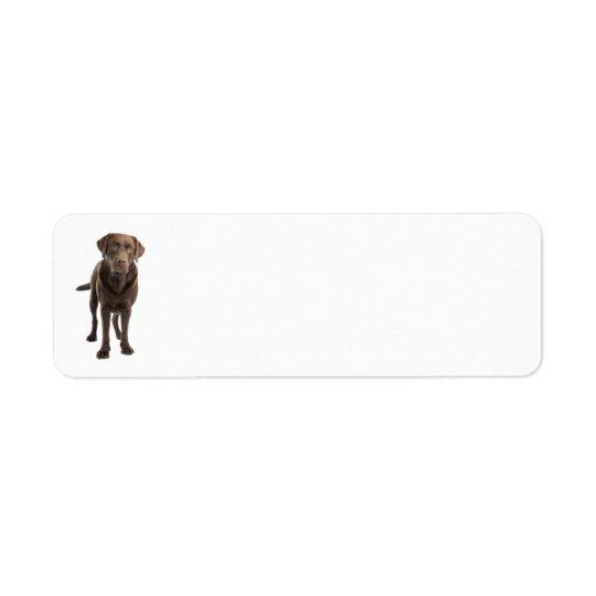 Dunkles Labrador-Adressen-Etikett Rücksende Aufkleber