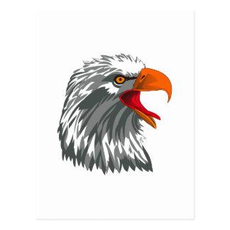 Eagle-Kopf Postkarte
