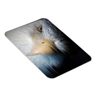 """Eagle-Wind"" Magnetkunst durch KaDazzle Flexible Magnete"