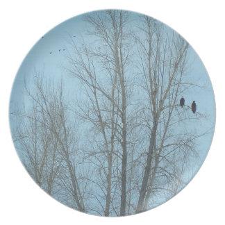 Eagles und Enten Melaminteller