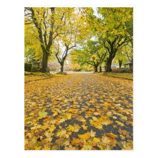 Eastmoreland in der Herbststraßen- und Postkarte