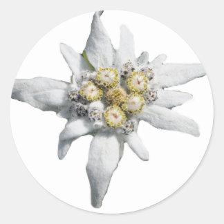 Edelweiss Sticker Rond