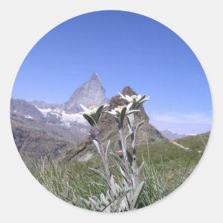 Edelweiss und Matterhorn