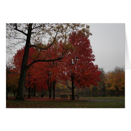 edgewood Park im Fall Karte