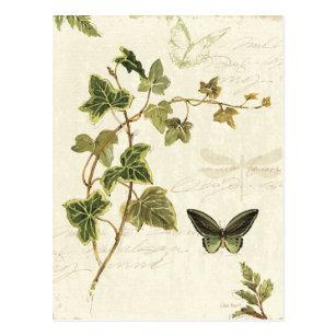 Efeu und Schmetterlinge Postkarte