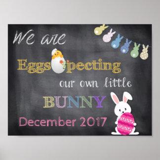 Eggspecting Ostern Schwangerschaft decken Poster