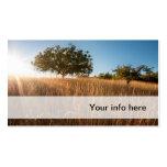 Eiche in der sonnigen goldenen Wiese Visitenkarten Vorlage