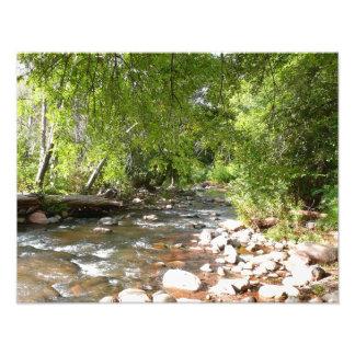 Eichen-Nebenfluss II Sedona Arizona in der Fotodruck