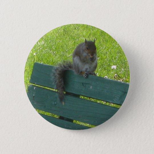 Eichhörnchen auf Bank Runder Button 5,7 Cm