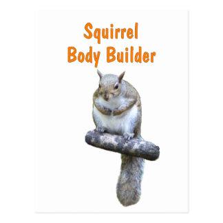 Eichhörnchen-Bodybuilder Postkarte