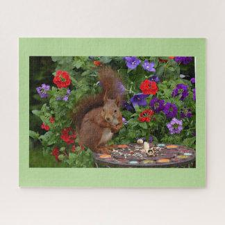 Eichhörnchen, das im Garten speist