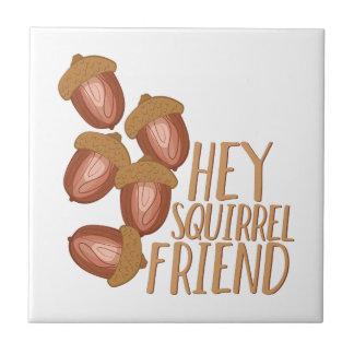Eichhörnchen-Freund Fliese