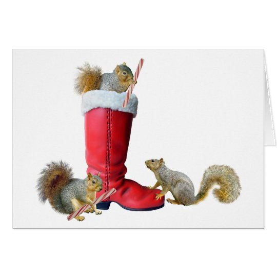 Eichhörnchen in Sankt Stiefel Karte