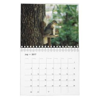 Eichhörnchen-Kalender Abreißkalender
