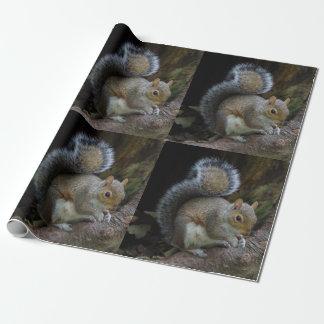 Eichhörnchen-Packpapier Geschenkpapier