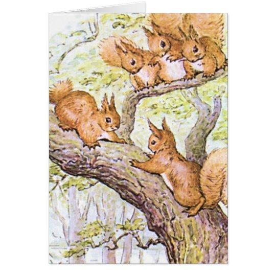 Eichhörnchen-Sitzung Karte