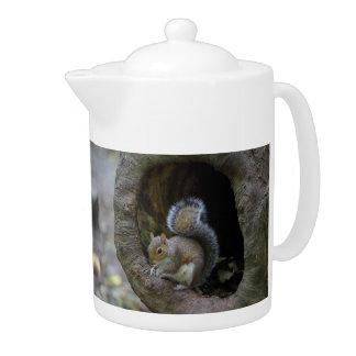 Eichhörnchen-Teekanne