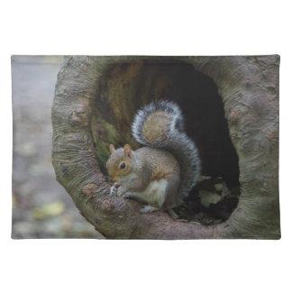 Eichhörnchen-Tischset Tischset