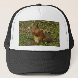 Eichhörnchen Truckerkappe