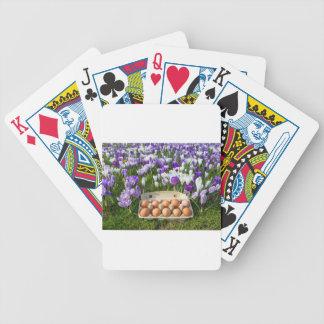 Eikasten mit Huhneiern in den Krokussen Poker Karten