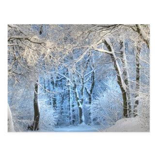 ein anderes Wintermärchenland Postkarte