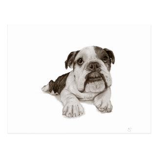 Ein Brindle Bulldoggen-Welpe Postkarte