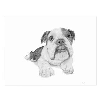 Ein Bulldoggen-Welpen-Zeichnen Postkarte