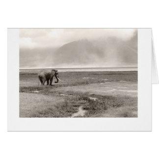 Ein Elefant im Nebel Karte